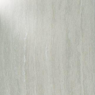 Taicera Fossil - P67208N