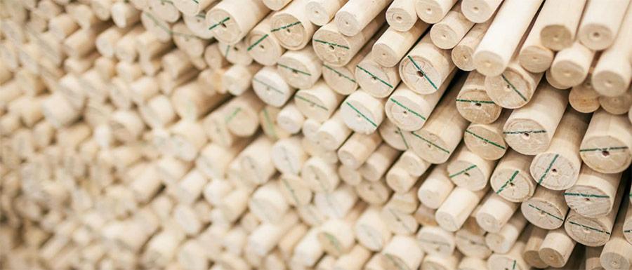 Ako vzniká stolička TON - 01 - Sušenie dreva a výroba guľatiny
